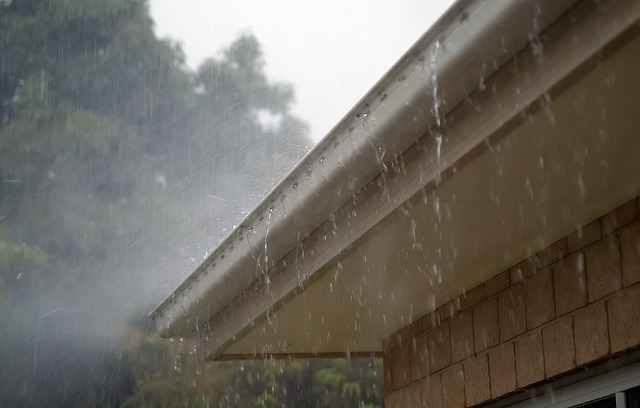 Gutter Cleaning and Drain Unblocking